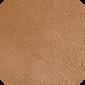 Tan Oak (7269)